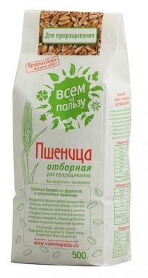 Пшеница отборная для проращивания,