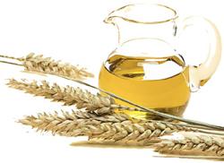 Масло зародышей пшеницы нерафинированное, Спивак, 50мл от Свой Путь